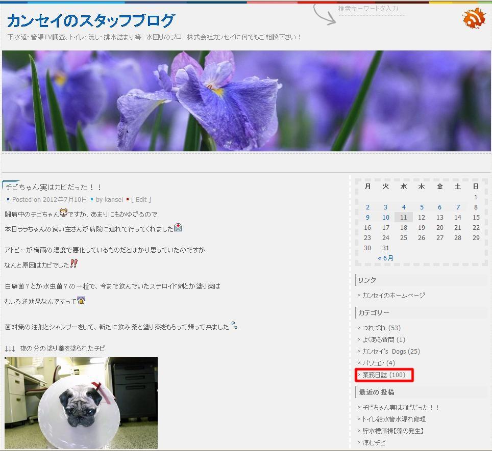 ブログカテゴリ【業務日誌】が100個♪