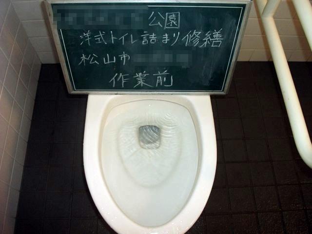 公園 洋式トイレ詰まり修繕