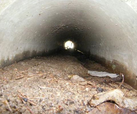雨水管清掃
